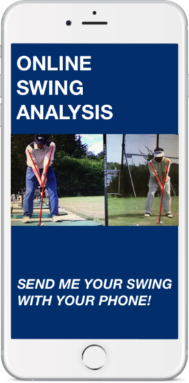 Online Swing Analysis